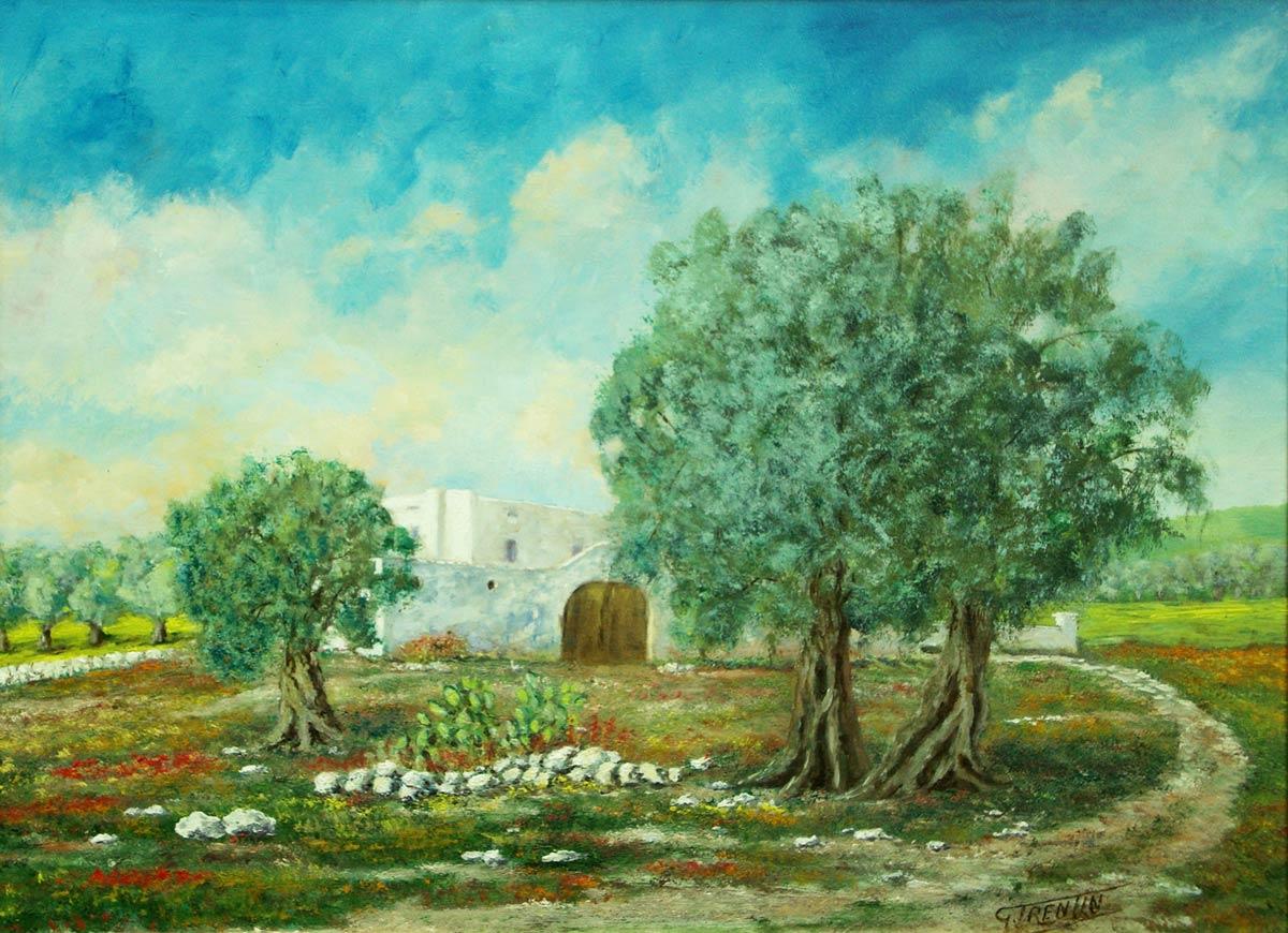 Olivi in Puglia - Dipinto ad olio
